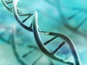 【T790M突变患者招募】马来酸阿法替尼片人体生物等效性试验