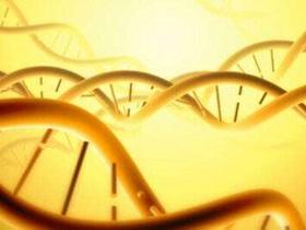 支付回扣让医生推荐基因检测,这家公司被重罚!