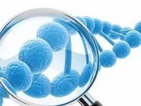 基因突变检测报告应如何解读?