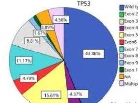 TP53基因突变怎么办?有什么靶向药?