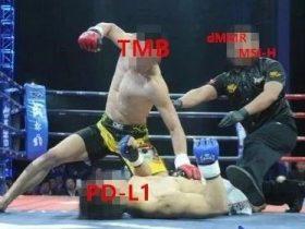 MMR基因与TMB,MSI-H,PD-L1的关系