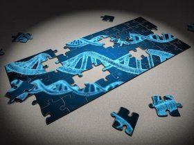 肿瘤基因突变检测FAQ