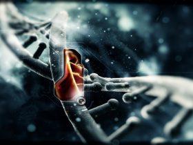 靶向治疗丨CD30和PD-1在霍奇金淋巴瘤治疗中的进展回顾