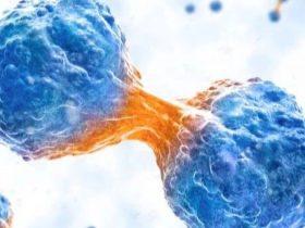 肿瘤基因组学研究最全综述回顾