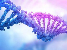 不做基因检测,肺Ca治疗就是盲人摸象!