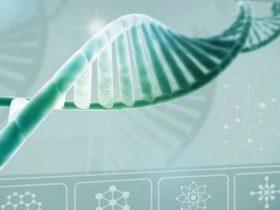 癌症中相互作用的mTOR信号传导和细胞代谢 | 临床治疗新方向