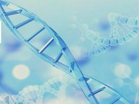 什么样的T790M突变患者生存期更长久?