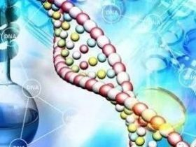 P53基因突变靶向药或将诞生!广谱且廉价!