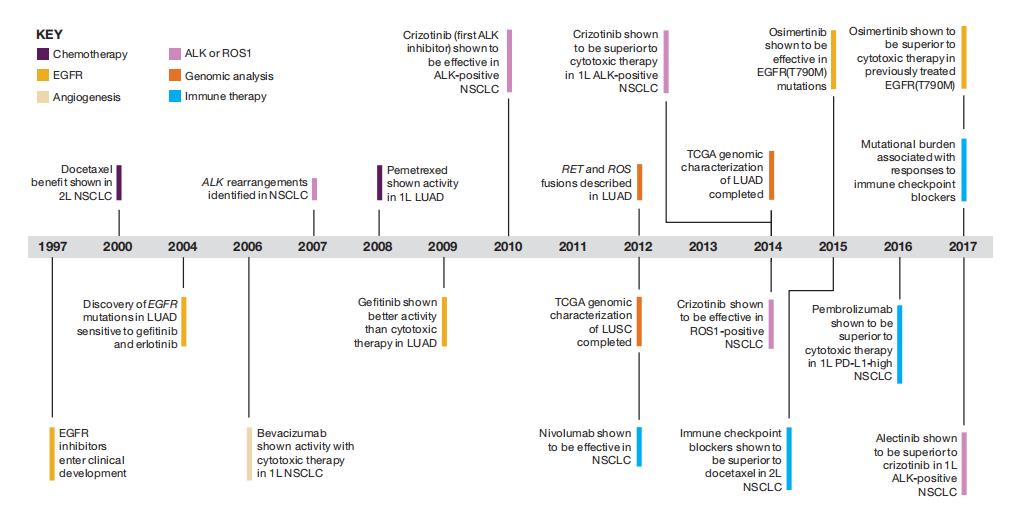 2020肺癌靶向治疗图解